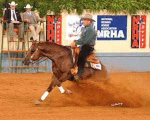 flarida20 20sm stop Mon cheval est doué... photo cheval