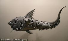poisson en enjoliveurs