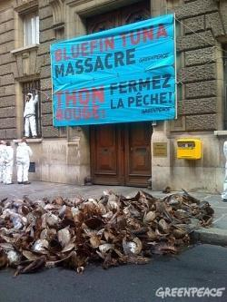 manifestation Greenpeace