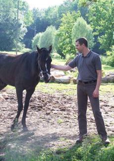 rdg3 Mon rival : un cheval à face de mouette photo cheval
