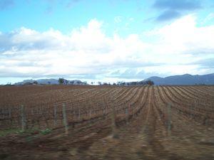 Rioja_