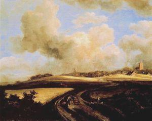 Jacob Isaacksz Van Ruisdael, Camino entre campos de trigo cerca del Zuider Zee, 1660-1662