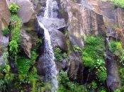 Merveilles Trois Bassins Réunion