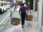 Macao sino-portugaise
