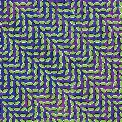 ANIMAL COLLECTIVE : Merryweather post pavilion