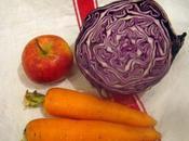 nouvelle recette mois, voila bonne résolution pour 2009. N01: Coleslaw.