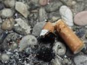 voulaient arrêter fumer mais leur maison avec cigarette