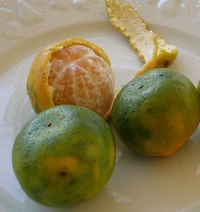 Marmelade d'oranges et mandarines à la cannelle
