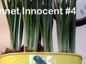 Bonnet Innocent