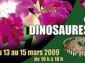 Exposition internationale orchidées dinosaures