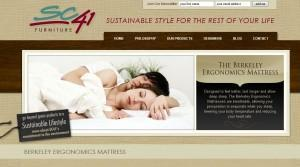SC41 - furniture website