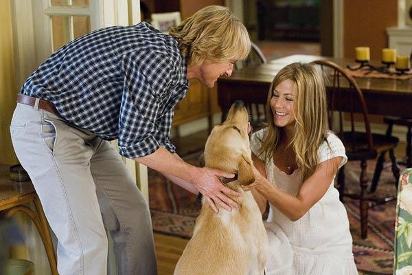 Owen Wilson et Jennifer Aniston. Twentieth Century Fox France