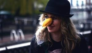 Ladyhawke (Creative Commons license: Lewis Chaplin)