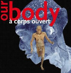 Our Body - Exposition Madeleine