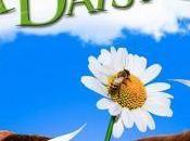 Pushing Daisies: Season Finale