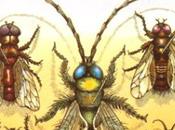 majesté mouches