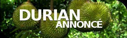 Durian Annoncé