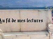 Focus blog celui Laetitia liseuse