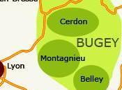 """Création nouvelles appellations: l'AOC """"Bugey"""" """"Roussette Bugey"""""""