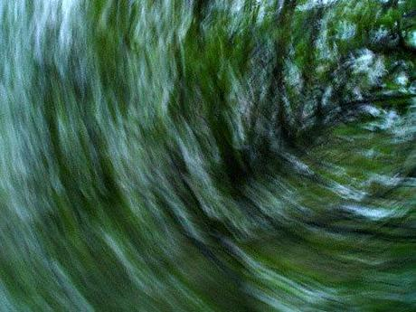 Abstract moving photo: cherry