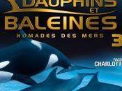 Critique Dauphins baleines nomades mers (par Jango)