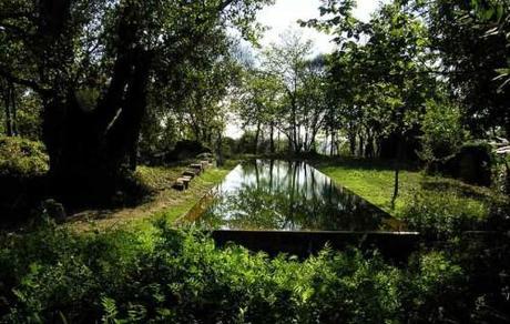 La piscine élodée de Floirac