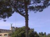 Castel Sant Angelo Lectures d'été