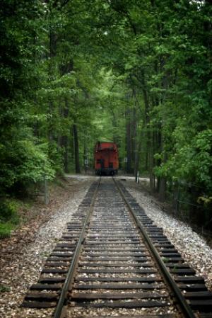 train (illustration)
