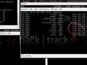 Ubuntu BackTrack