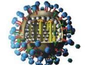 Pandémie grippe Quid notre informatique