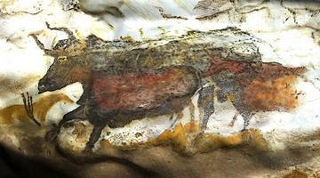 Visite virtuelle de la grotte de Lascaux