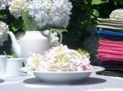 Bouquet HOrtensia drôle variante