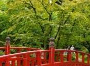 Mémoires Kyoto Jardin Albert Kahn