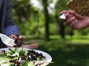 Assiette écologique