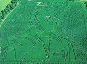 Verizon Largest Corn Maze...