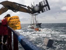 Chalutage fond Greenpeace érige rempart naturel dans eaux suédoises