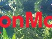 ExxonMobil développer nouveau Biocarburant base d'algues