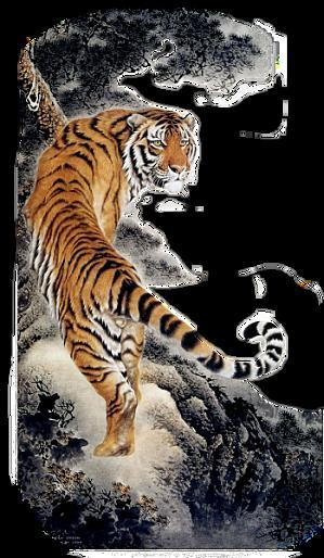 The tiger of Caussol , it is you or me?
