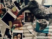 Polaroid compagnie