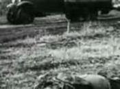 """""""Apocalypse"""", Seconde Guerre mondiale nouvellement vue, émission discutable, Stalingrad"""