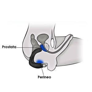 stimulation prostate