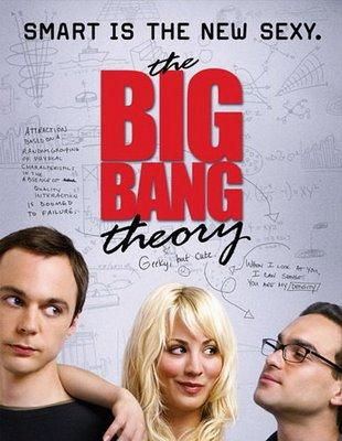 Vu : The BIG BANG theory - saison 1
