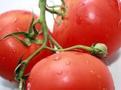 Salsa fraîche tomates