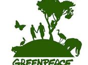 Greenpeace images comments