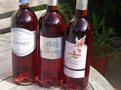 Dégustation vins rosés Bordeaux