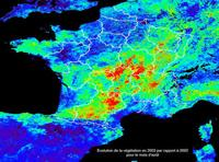 carte meteo vegetation evolution secheresse spatial satellite cnes activite phtosynthese incendie foret