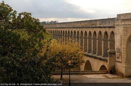 Vacances de la Toussaint ou séjour dans l'Hérault ?