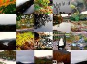 Reverie d'automne…