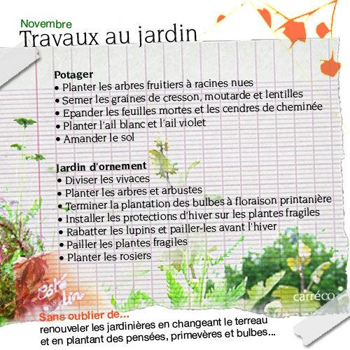 Travaux De Novembre Au Potager Et Au Jardin D Ornement Paperblog