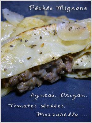 Agneau, Tomates séchées, Origan, Herbes, Mozzarella, Parmesan, Pâte à raviolis, Farine, Oeufs,